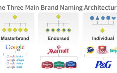Master, endorsed, individual brand